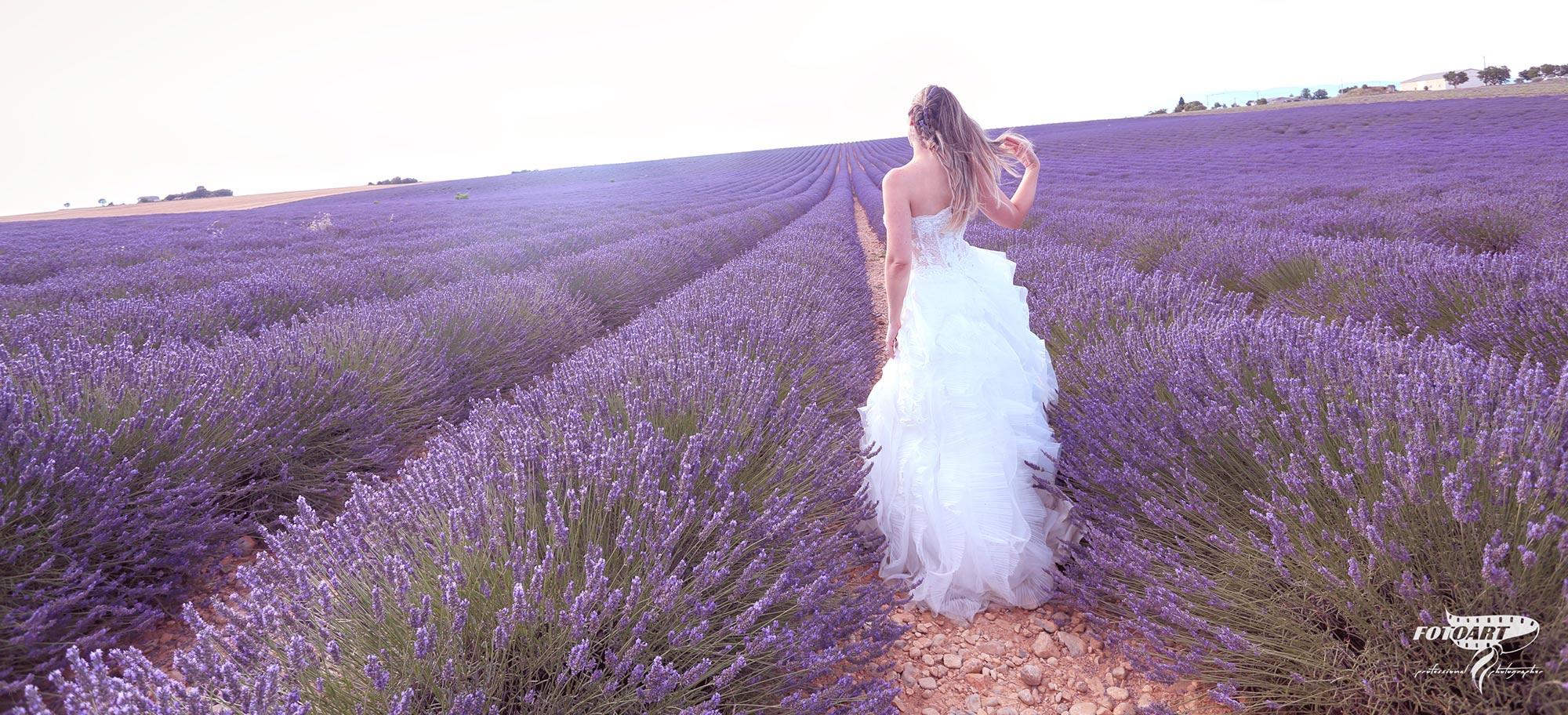 Matrimonio immerso nei fiori di lavanda - FotoArt Lucca